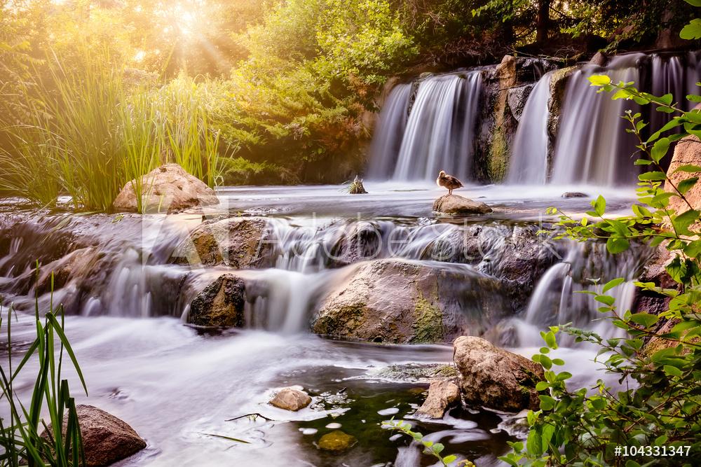 Fotobehang op maat met watervallen